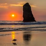 Gull and Needle, Sunset