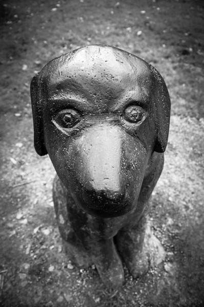 Todmorden Lucky Dog