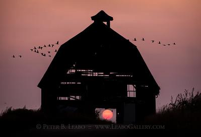 Midwestern Fall Sunset