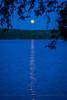 Hemlock Moon
