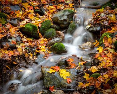 Falls Waterfalls