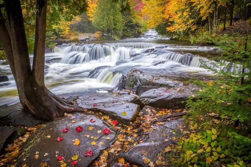 Fall Color at Bond Falls