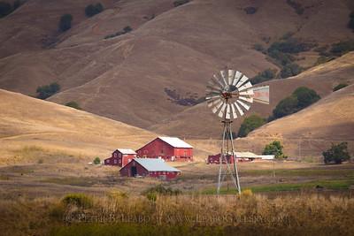 Rural Marin