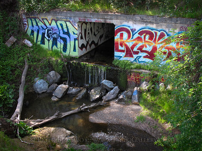 Rural Graffiti
