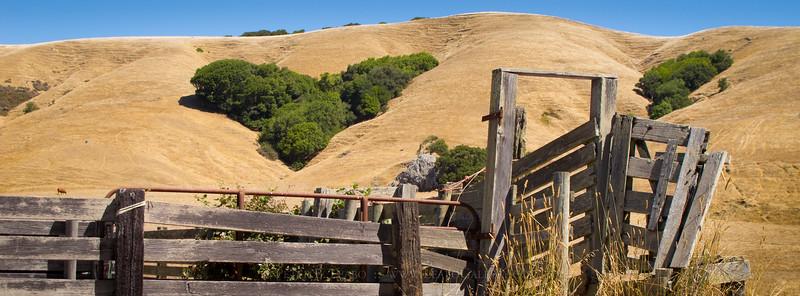 Heart of the Golden Hills