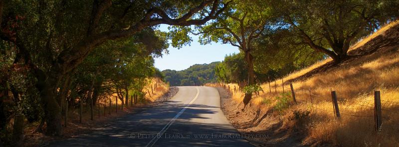 Sonoma Backroads