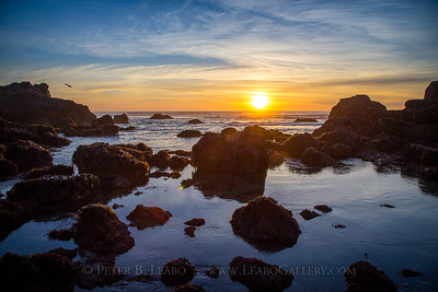 Sonoma Coast Sunset