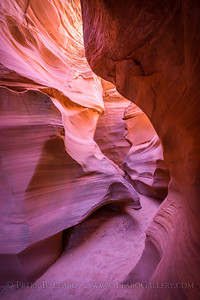 Canyonscape: Rattlesnake Canyon
