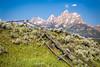Tetons Landscape