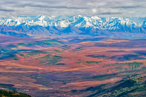 Across Denali National Park from the Kantishna Hills ridge