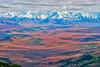 Across Denali National Park