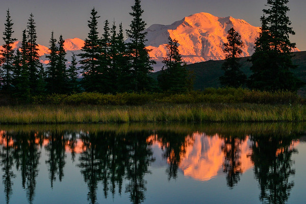 Mt Denali at Sunset