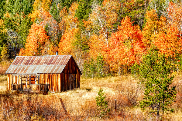A Classic - Hope Valley Cabin