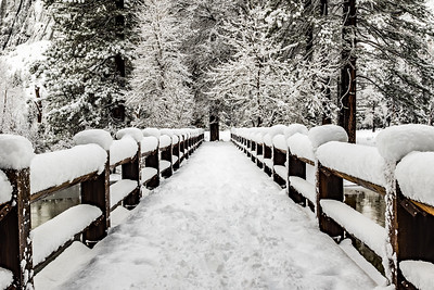 Fresh Snow Covering Swinging Bridge