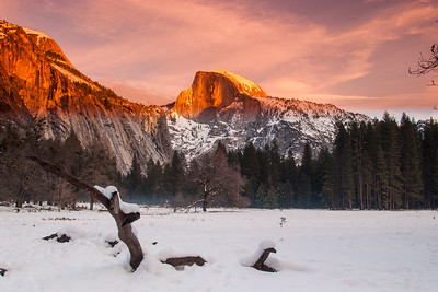 Sunset on Half Dome from Cook's Meadow