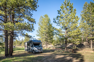 Bryce Forest Service Campground
