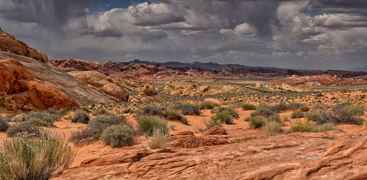 Valley of Fire Pano 3