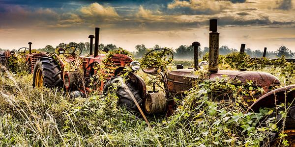 Old tractors 43-Edit-3