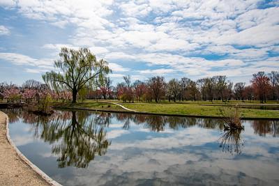 Spring in Constitution Gardens