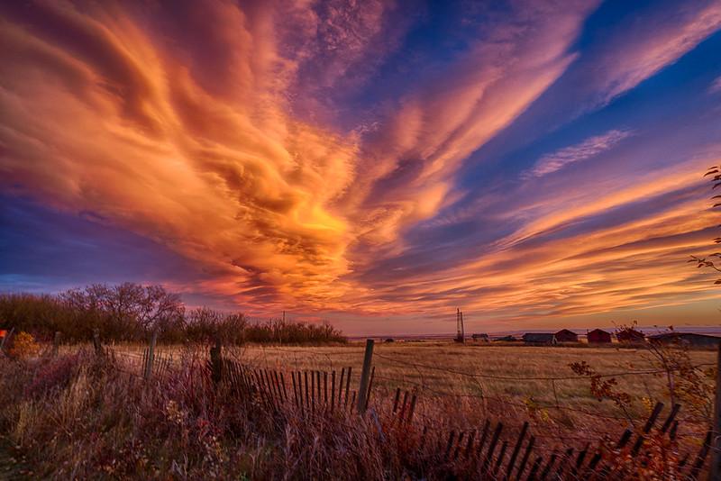 Sunset  Sheds Fence (1 of 1)