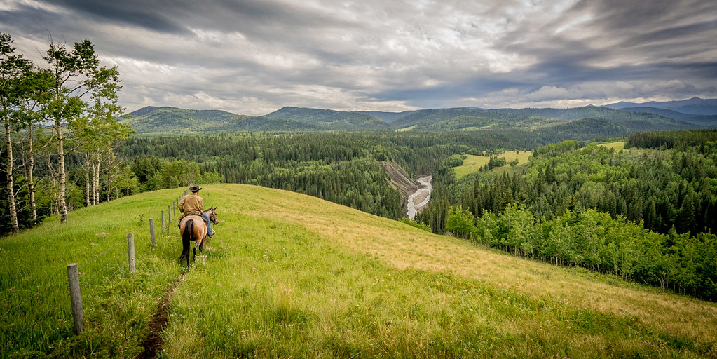 HorseRiding (77 of 402)