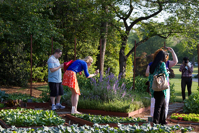 G+ Photowalkers in the Garden