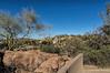 Cactus garden overlook, ASDM