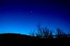 Venus, pre-dawn, over Tucson