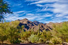 Sabino Canyon, Tucson - filtered version