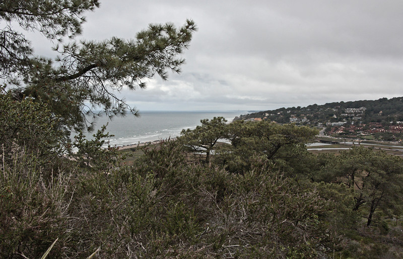 View of ocean and Soledad Creek just north of Torrey Pines State Reserve.  Taken from the first overlook as you drive up the hill.<br /> <br /> Southern California.<br /> March, 2009
