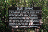 Information about Blue Spring, standing at the trail head from the parking lot to the spring.<br /> <br /> This parking lot is reached by driving down a very steep, very narrow gravel access road.  If you take this route to Blue Springs, keep your fingers crossed that you don't meet anyone on the way!