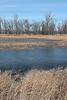 Eagle's nest.<br /> <br /> Squaw Creek National Wildlife Refuge,<br /> Mound City, Missouri<br /> Early December.