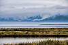 Moody River - Columbia River wetlands