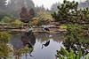 Shore Acres Gardens,<br /> Shore Acres State Park,<br /> Near Coos Bay, Oregon.<br /> September 2010.