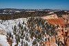 Rainbow Point, Elevation 9115 feet.<br /> Bryce Canyon National Park, Utah.