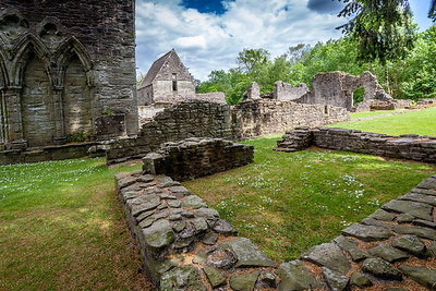 Inchmahome Priory - 9313