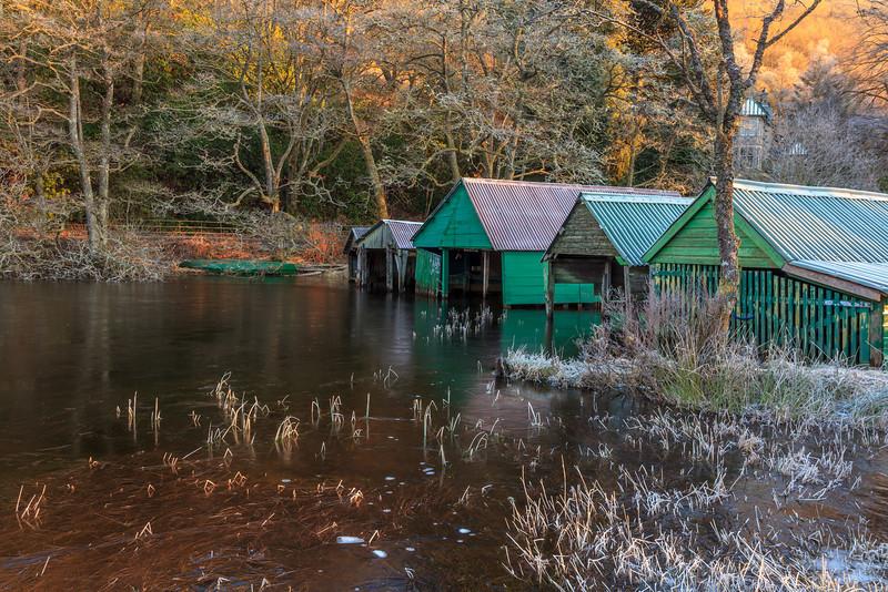 Boat Houses Loch Ard - 8692