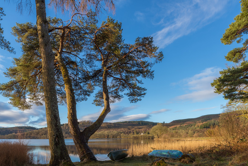 Glorious Moring on the Loch 3