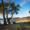 Glorious Moring on the Loch 2