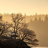 Tree House Loch Ard - 8700