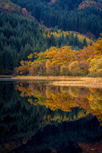 Loch Chon, Autumn Colours