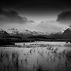 Lochs of Rannoch moor in black and white.