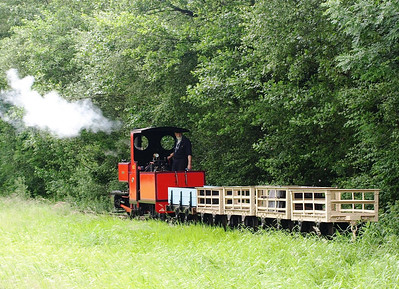 Bressingham resident 'Bevan' on a demonstration freight consisting of a restored  ex-Penrhyn Fullersite wagon plus four ex-Festiniog slate wagons.