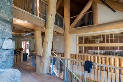 The new Ravine Lodge includes an impressive 'slingshot' tree from Put's land, with a catwalk passing through; the clearstory windows from the old Lodge, and wainscoting made from logs salvaged from the old Ravine Lodge. Photo by David Kotz '86.