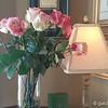 "February 27, 2016<br /> <br /> Roses<br /> <br /> ""PAULETTE'S RESTAURANT""<br /> River Inn of Harbor Town <br />  50 Harbor Town Square<br />  Memphis, TN 38103<br />  Telephone Number: (901) 260.3333<br />  Paulette's Restaurant: (901) 260-3300<br />  Official website: <a href=""http://www.riverinnmemphis.com"">http://www.riverinnmemphis.com</a>"