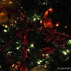 CHRISTMAS DECORATIONS, 2011<br />  <br /> Peabody Little Rock<br />  Little Rock, AR