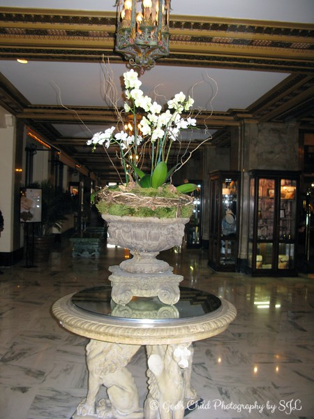 """August 30, 2008<br /> <br />  """"Historian David Cohn once wrote, """"The Mississippi Delta begins in the lobby of The Peabody Hotel… If you stand near its fountain in the middle of the lobby… ultimately you will see everybody who is anybody in the Delta…"""" Truly, in the minds of many, The Peabody is Memphis. Despite closing its doors twice, the hotel is a community institution, where celebrities, tourists, socialites and business travelers mix and mingle with ease.""""<br /> <br /> """"The Peabody Memorabilia Room honors the rich heritage of the hotel and the city and is filled with historic artifacts such as old menus, news clippings and photographs donated by guests and friends of The Peabody.""""<br /> <br /> """"The world famous March of The Peabody Ducks takes place daily at 11 a.m. and 5 p.m. with great fanfare. The Peabody Ducks are celebrities in their own right, living in grand style in their rooftop Royal Duck Palace and arriving via a red carpet to the tune of John Phillip Sousa's """"King Cotton March. The Peabody's marching ducks are national celebrities, having appeared on The Tonight Show with Johnny Carson and on Sesame Street. Original Property Opened: 1869."""" <br /> <br /> ~ Reprinted text from here: <br /> <br /> <a href=""""http://www.historichotels.org/hotels-resorts/the-peabody-memphis/?from=search"""">http://www.historichotels.org/hotels-resorts/the-peabody-memphis/?from=search</a><br /> <br />  """"THE PEABODY MEMPHIS"""" 2008<br />  Memphis, TN"""