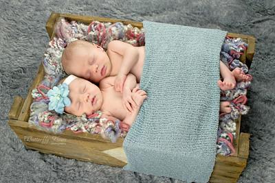 Galt Newborn Photographer
