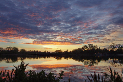 Lodi lake dawn2