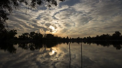 Muggy morning, 7/23/2017 at Lodi Lake